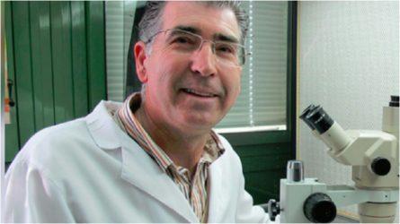 Celíacos de todo el mundo celebran el hallazgo de científicos cordobeses al aislar el gluten del tri...